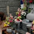 0017_20111106doll